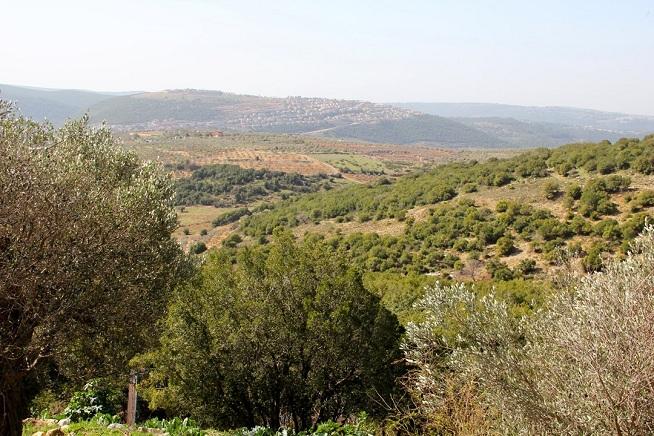 הנוף מהבית של ארז. אין כזה בתל אביב. צילום: קרן ביטון כהן
