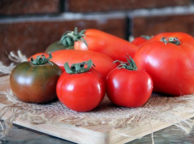 עגבניות, טעימות בכל הצבעים והצורות צילום: קרן ביטון כהן