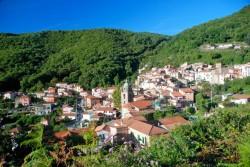 ירוק כמו הגבעות. כפר בצפון איטליה. צילום: איציק קסאפו