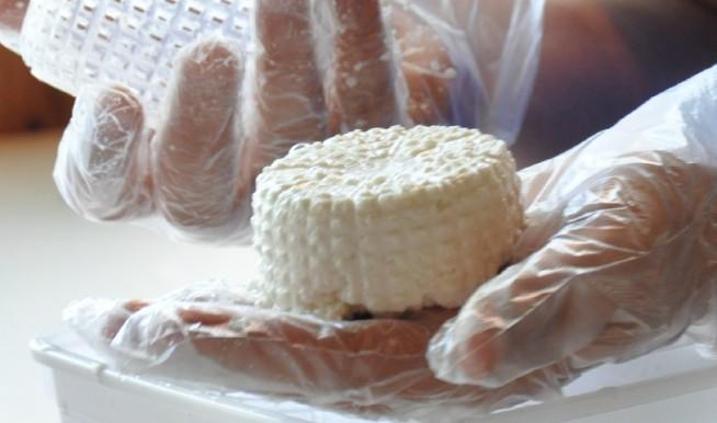 איך להכין גבינה צ'רקסית. צילום: חיים רוז