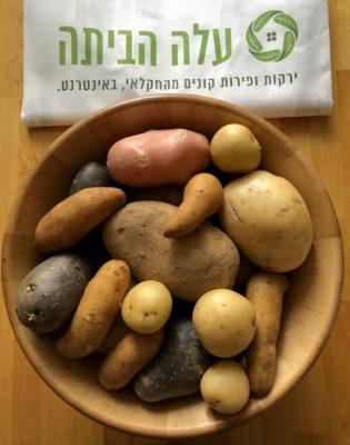 ניוקי תפוחי אדמה